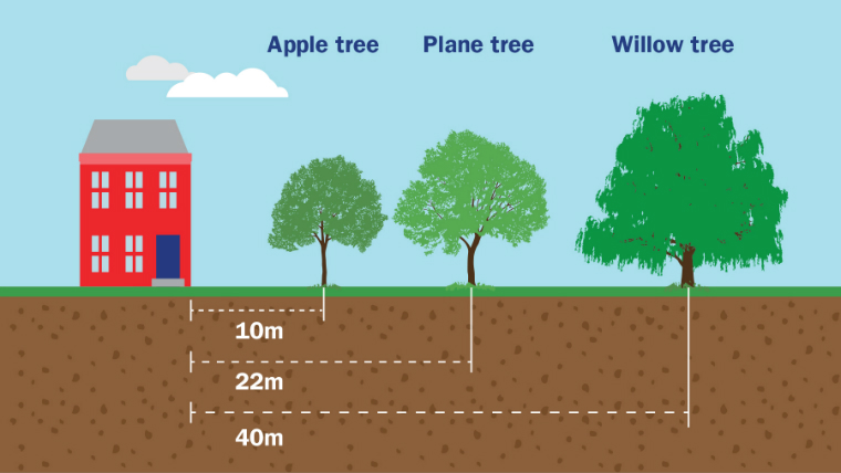 Spotting the signs of subsidence   AXA Insurance