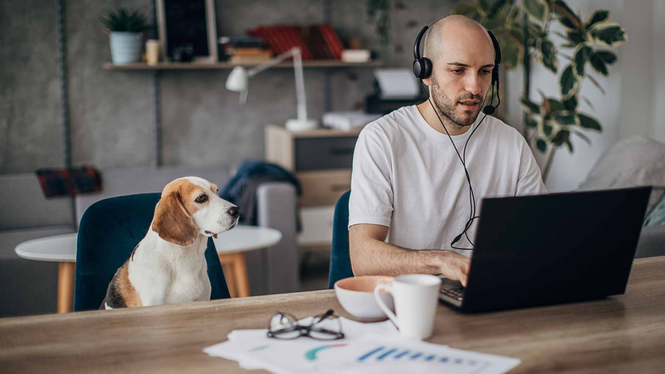 Middle aged man working on his laptop while a dog watches