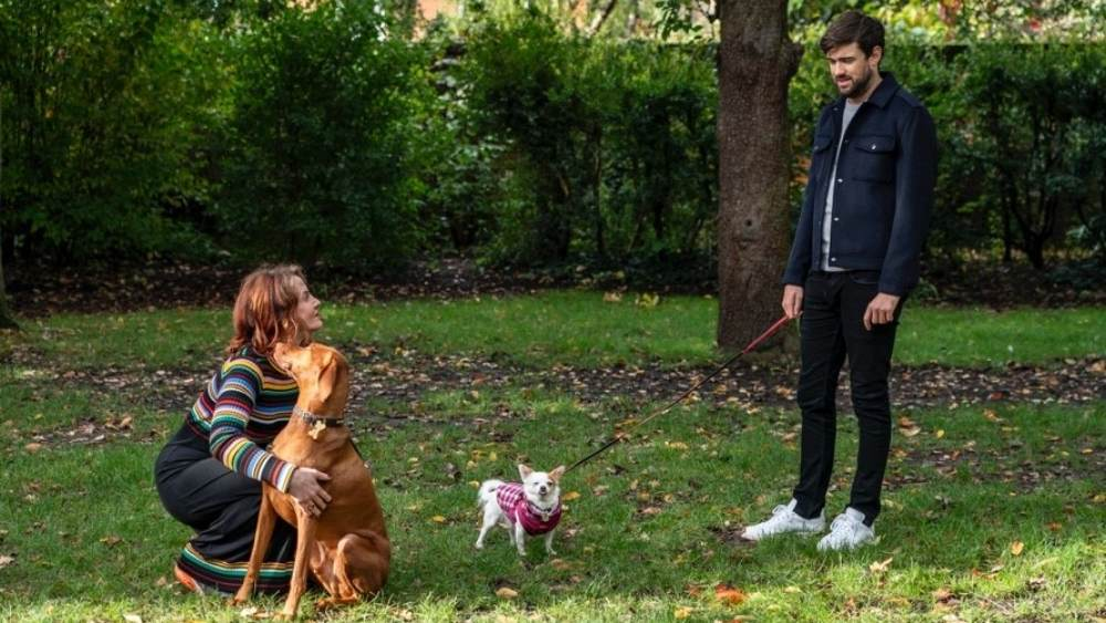 Jack Whitehall and Dr Annabel Bentley walking their dogs