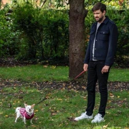 Jack Whitehall walking his dog